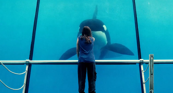 rust and bone Hey Man, Nice Shot   2012 Edition